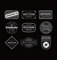 Vintage logo insignia badge set vector image