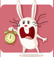stressed bunny with alarm clock vector image