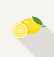 Lemon Flat Icon vector image