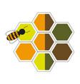 bee hive team work community concept vector image