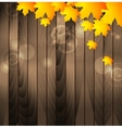 Autumn maple leaves on wooden background vector image