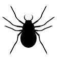 Spider on white vector image