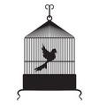 birdcage vector image