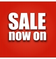 Sale now on poster with bag vector image