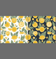 set of two seamless patterns with hand drawn vector image