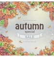 Background of a big autumn sale with the image of vector image
