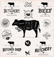Beef Cuts Diagram and Butchery Design Elements vector image