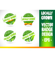 Localy grown Badge vector image