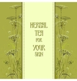 Hand drawn green herbs Vertical design background vector image