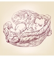little baby asleep in the wings of an angel hand vector image