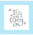 its a boy text vector image
