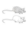 cartoon rat doodle vector image