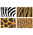 Animal fur patter vector image