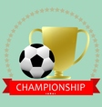 Soccer football medal cup vector image
