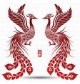 Chinese phoenix vector image