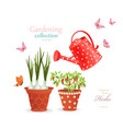 different herbs planted in flowerpots on white vector image vector image