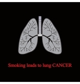 Smoking leads to lung cancer vector image