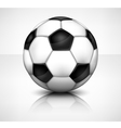ball vector image vector image
