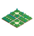 isometric view projection summer landscape vector image