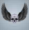 Metal chrome skull with two wings vector image