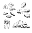 Hand drawn set of potato sketch vector image