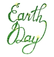 Lettering Earth day tinsels vector image