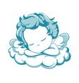 sleeping litle Angel vector image
