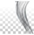 Closeup of long human hair vector image vector image