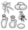 set olives olive oil design element for logo vector image