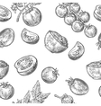 Seamless pattern with Tomato half and slice vector image vector image