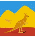 Australian Kangaroo Outdoors vector image