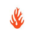 Coral logo vector image