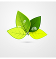 Abstract Green 3d Leaves Isolated on Grey vector image