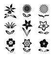 Flower set Black silhouettes on white background vector image