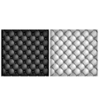 leather upholstery white black vector image