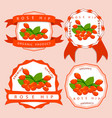 the theme rose hip vector image