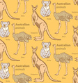 Sketch Australian animals in vintage style vector image