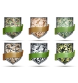 Shields with flag Camouflage vector image