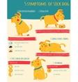 Five simptoms of sick dog Infographics vector image