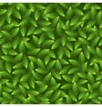 Green leaves pattern Seamless vector image