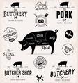 Pork Cuts Diagram and Butchery Design Elements vector image