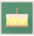 Birthday cake icon with shadow vector image
