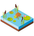 3d design for animals in the pond vector image