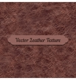 brown crumpled leather texture vector image
