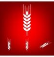 Wheat icon set Isometric effect vector image