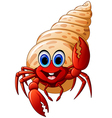 Cartoon hermit crab vector image