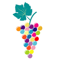 Abstract colorful bunch of grapes vector image