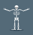 Happyl skeleton stretched out his arms in an vector image