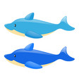 two blue dolphins on white background vector image