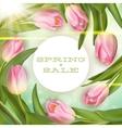 Spring sale Background EPS 10 vector image